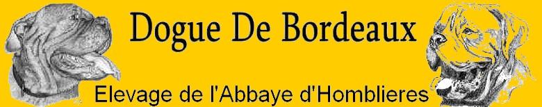 Elevage de l'Abbaye d'Homblières
