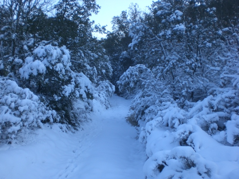 neige chez viti Cimg0018