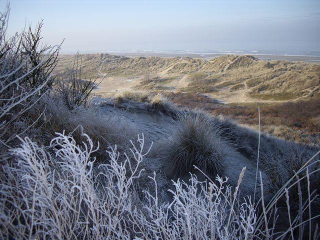 Postez vos meilleures photos (de fin d'année) Dunes_10