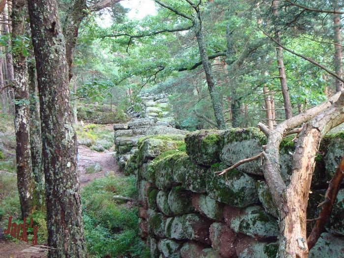 Le Mur Païen Photo_10