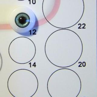 [Gabarit utile] Mesurer rapidement le diamètre d'yeux ? Essai_10