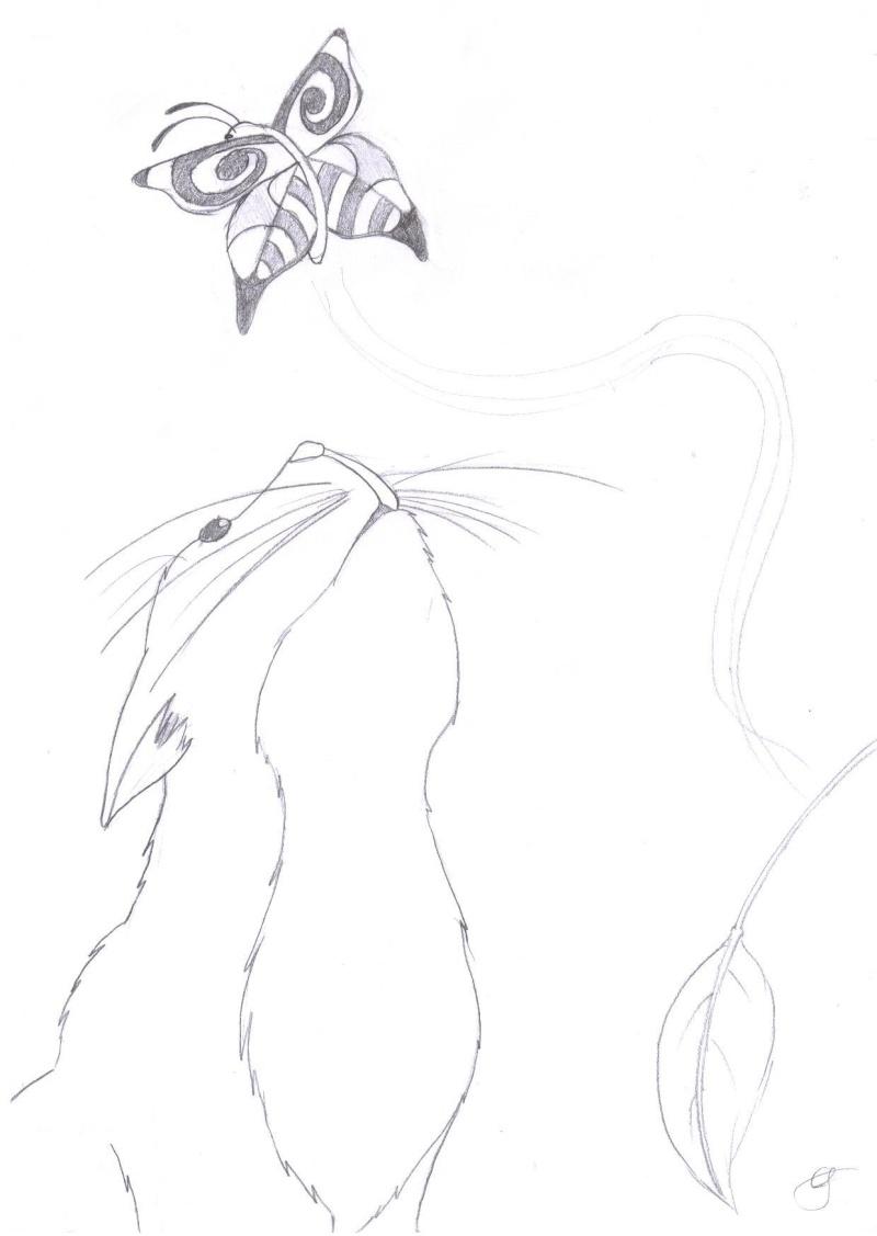 *Créations d'Etoile d'Ebène* - Page 2 Envole10