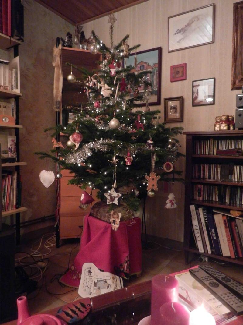 Nos sapins de Noël  Dscn8910