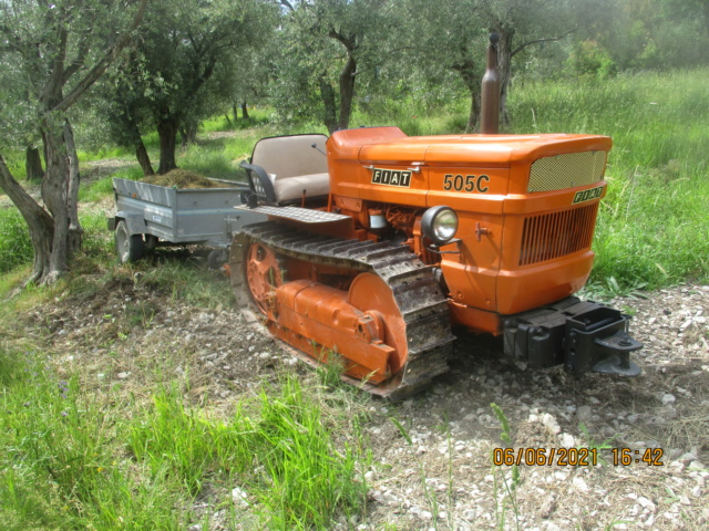 Les oliviers de Elie henry. Img_2227