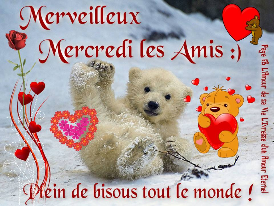 salut tout le monde Mercre10