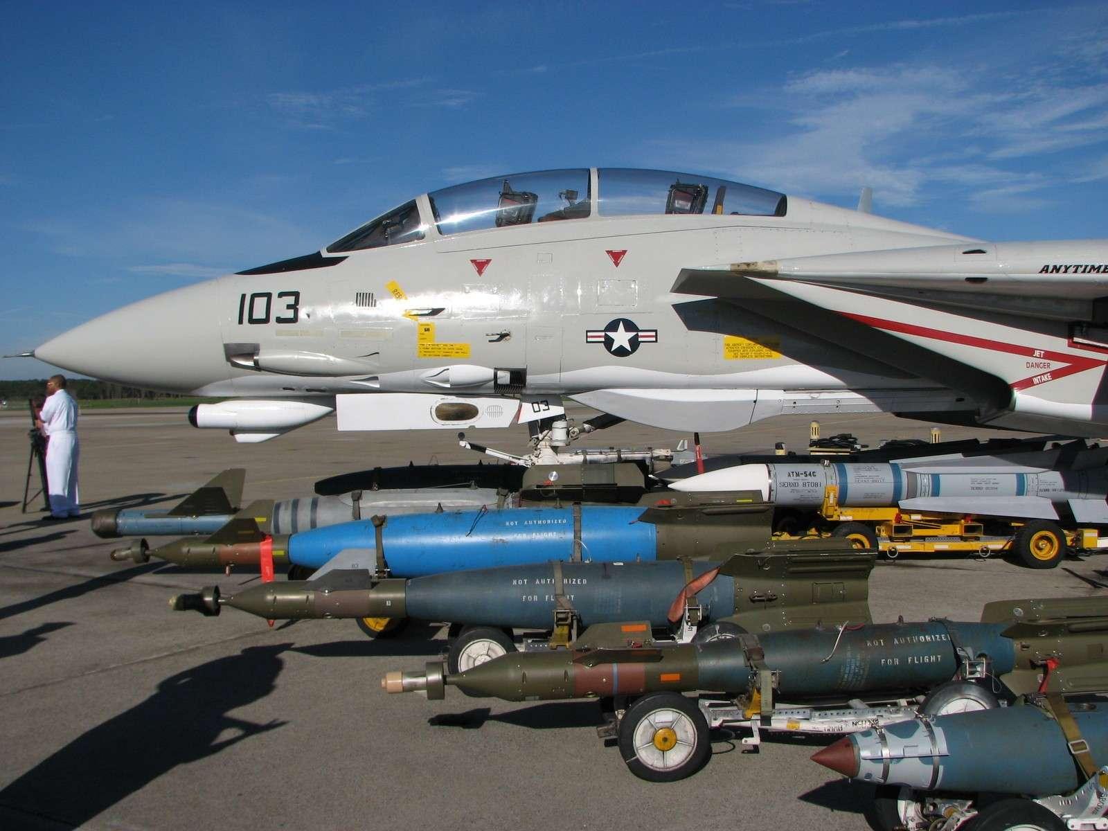 F-14 Tomcat - Page 2 Img08711