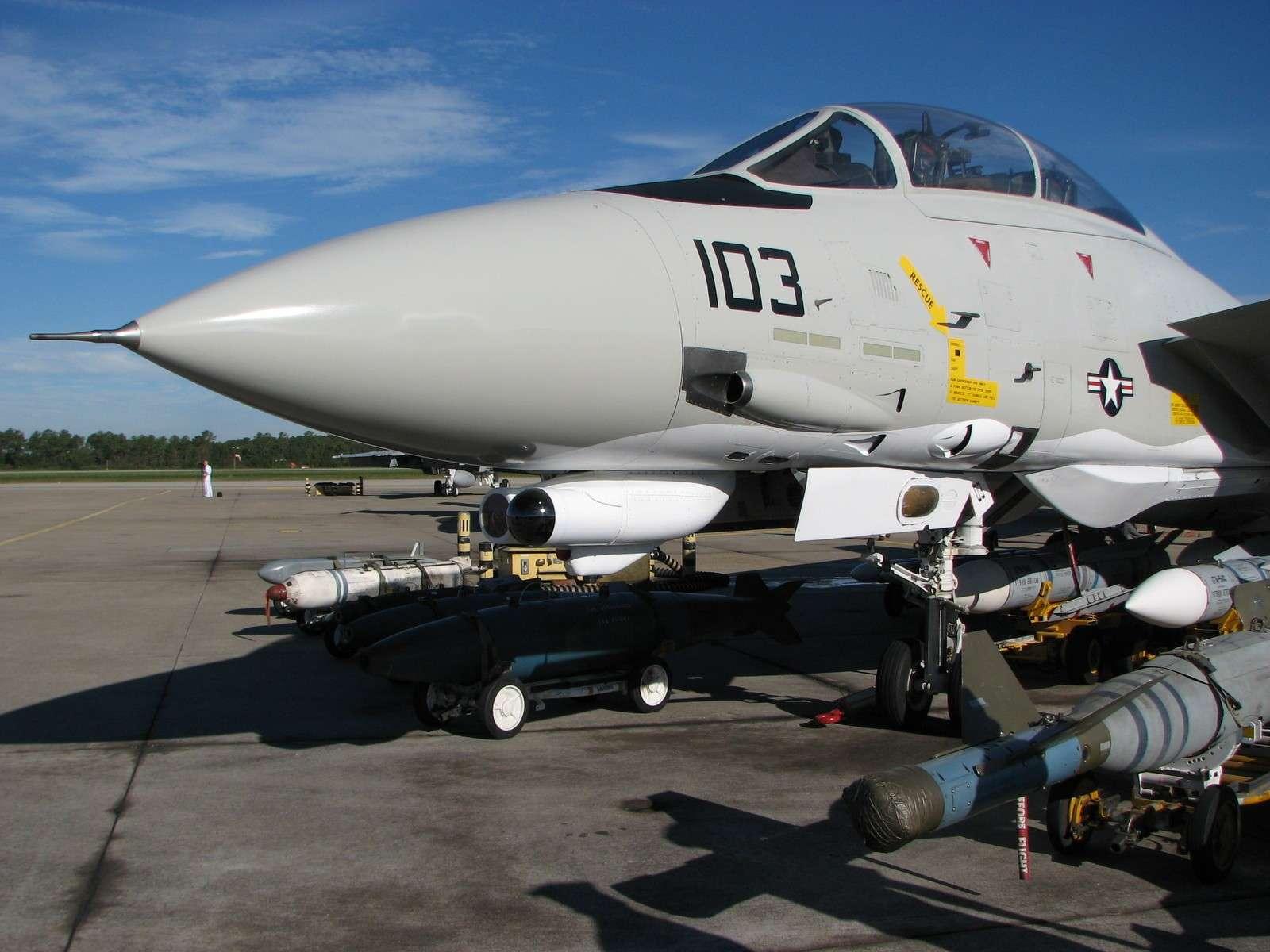 F-14 Tomcat - Page 2 Img08712