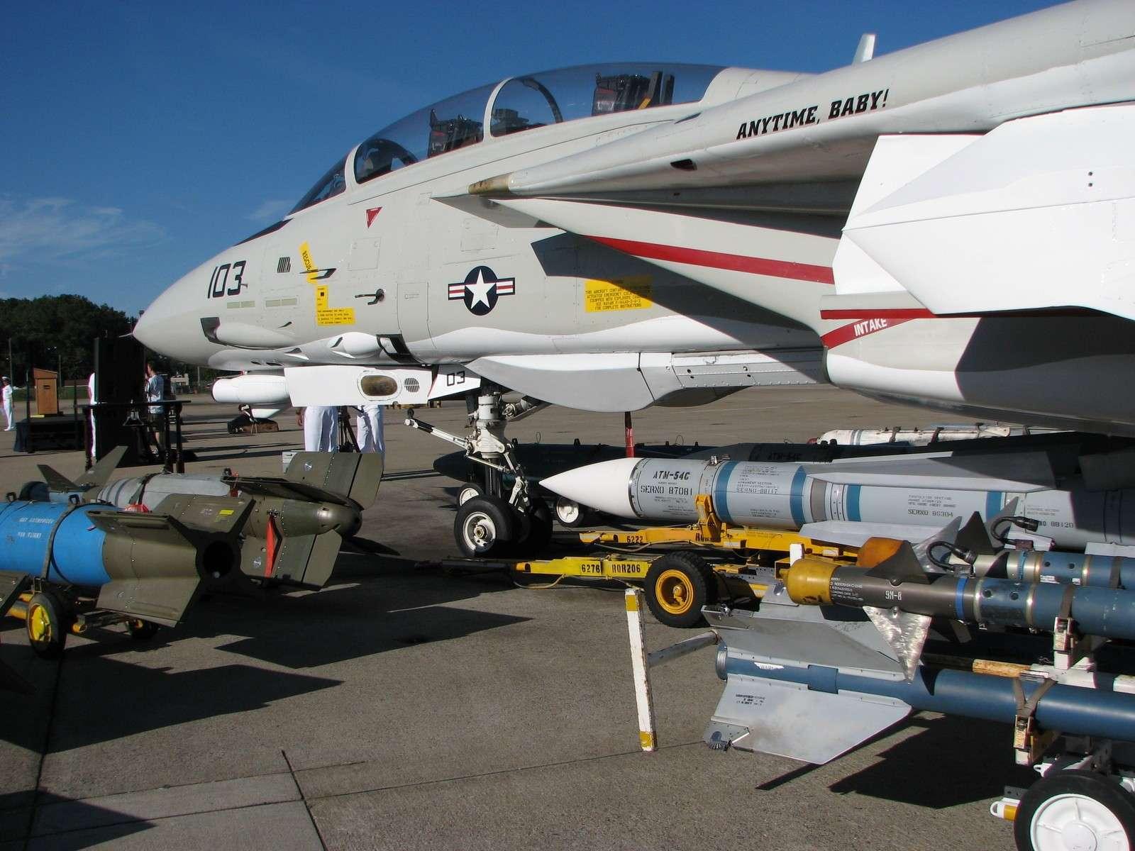 F-14 Tomcat - Page 2 Img08714