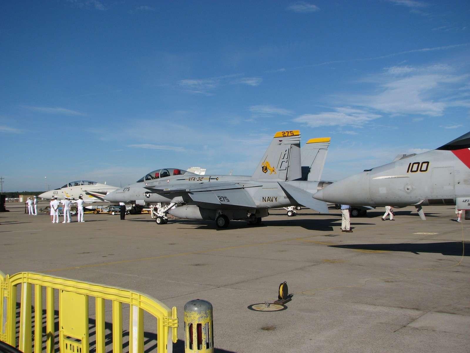 F-14 Tomcat - Page 2 Img08715