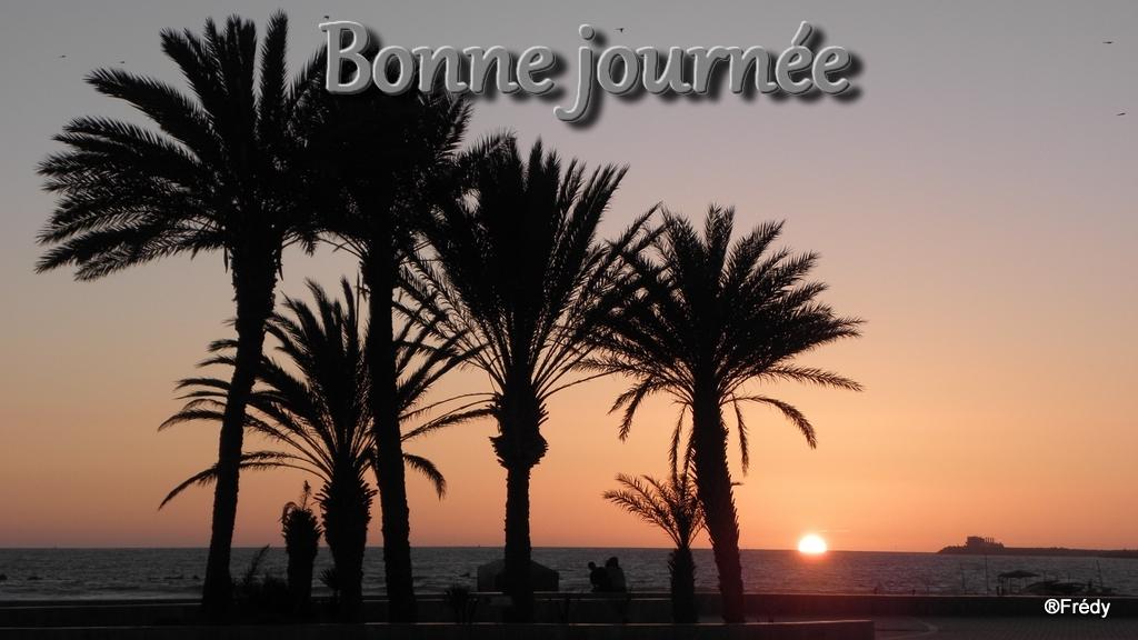 Semaine du 20 au 26 Aout Agadir10