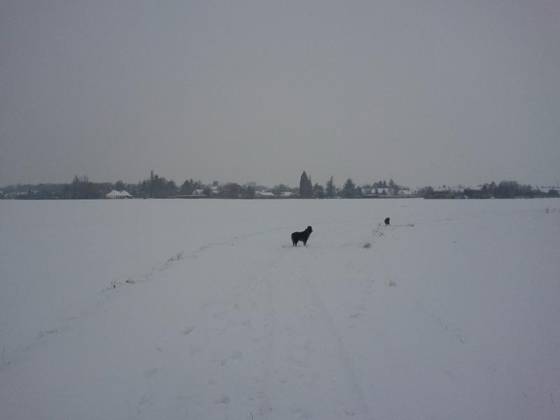 Vive la neige Img_2010