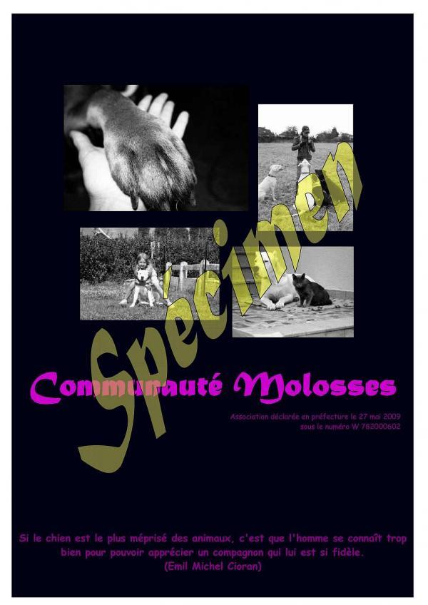 Calendrier Communauté Molosses Calend10