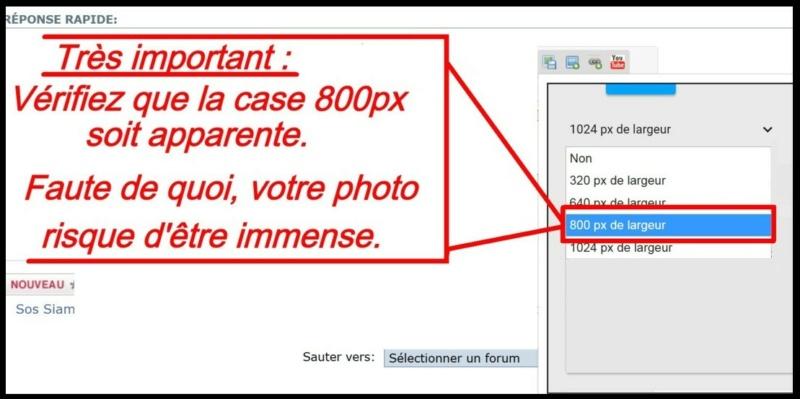 Comment insérer une photo - Page 2 Insere12