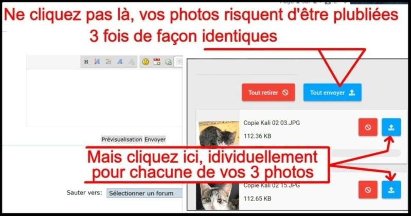 Comment insérer une photo - Page 2 Insere14