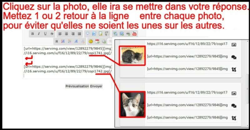 Comment insérer une photo - Page 2 Insere15