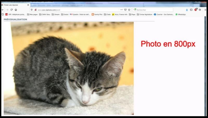 Comment insérer une photo - Page 2 Insere18