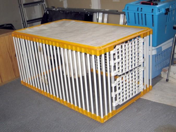 Mettre un chat dans une caisse de transport Mettre12