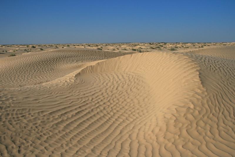Tunisie 2011 Desert10