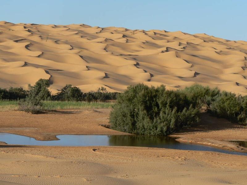 Tunisie 2011 Desert16