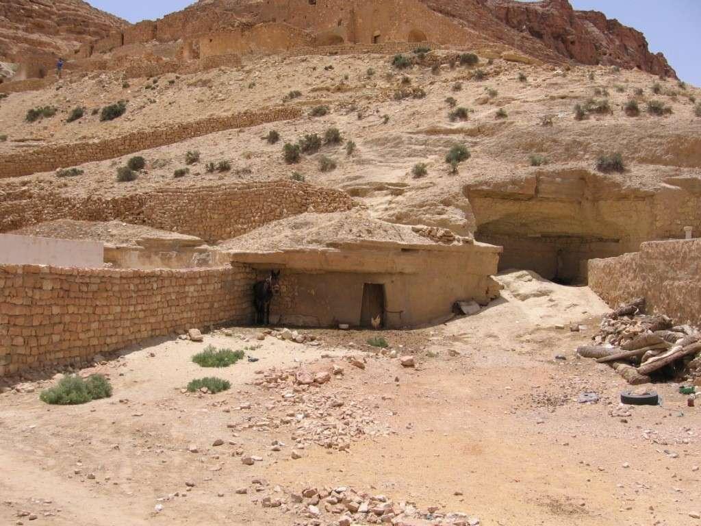 Tunisie 2011 Desert20