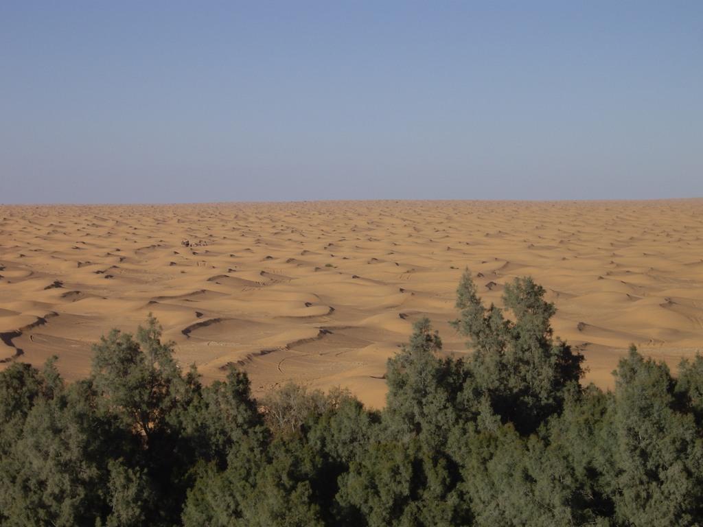 Tunisie 2011 Desert25