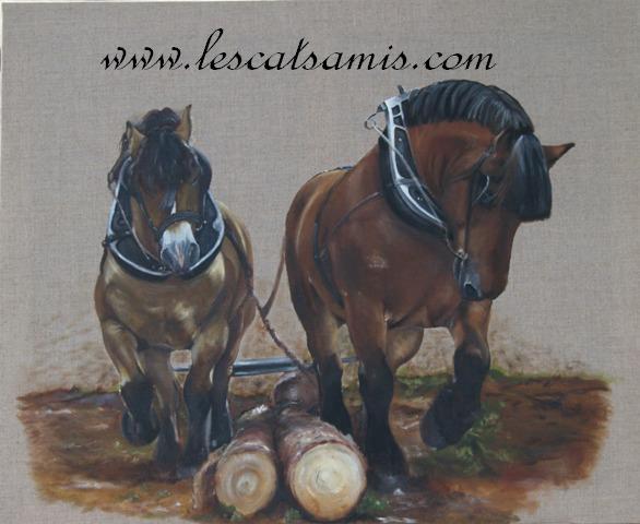 Cathy peintre animalier - Page 5 Ardenn10