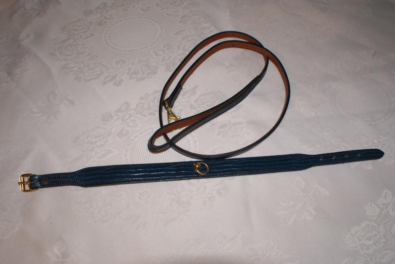 Ensemble Laisse + collier cuir bleu. Dsc03633