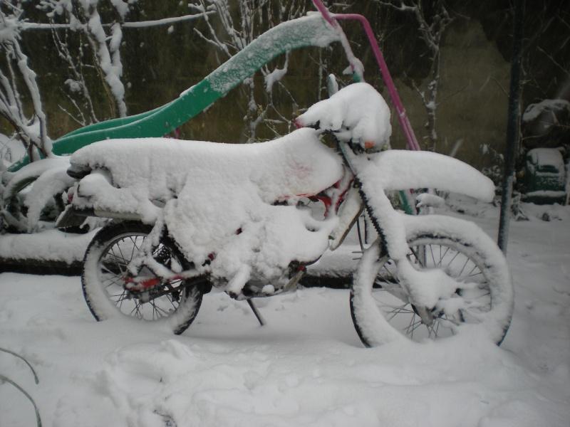 concours photo (janv 2010)votre timono et la neige Dscn1910