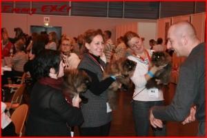 Expo D'Arras 09 Ecaill10