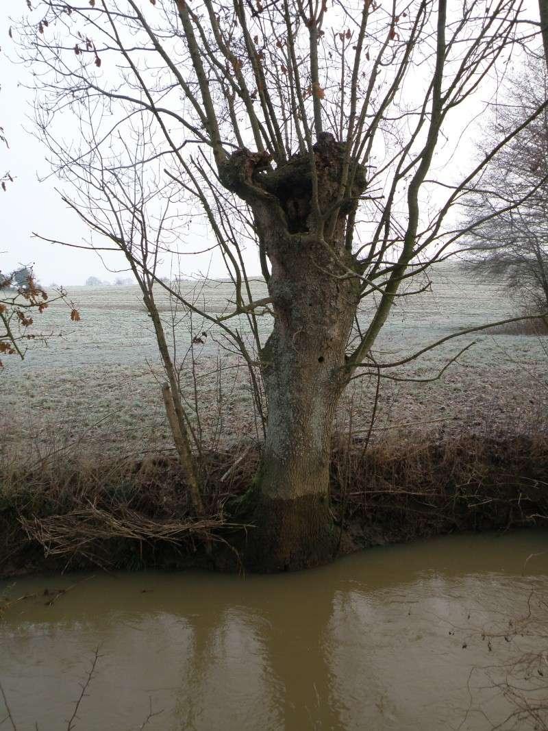 Hiver en Mayenne Vauvar16