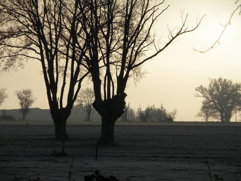 Hiver en Mayenne Vauvar17