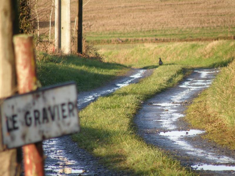 Hiver en Mayenne Vauvar21