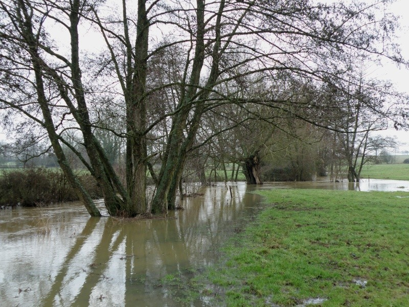 Janvier... mois des inondations Vauvar27