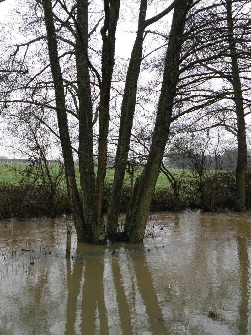 Janvier... mois des inondations Vauvar28