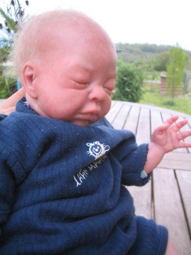 Les bébés de Tabatha 40553610