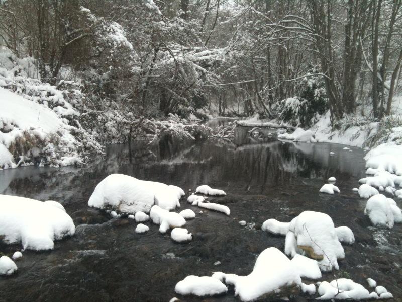la neige !! Le_bla10