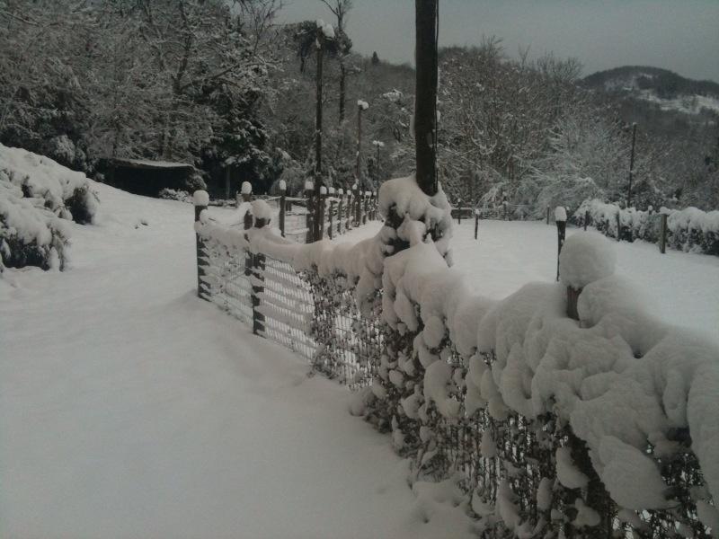 la neige !! Lice_e10