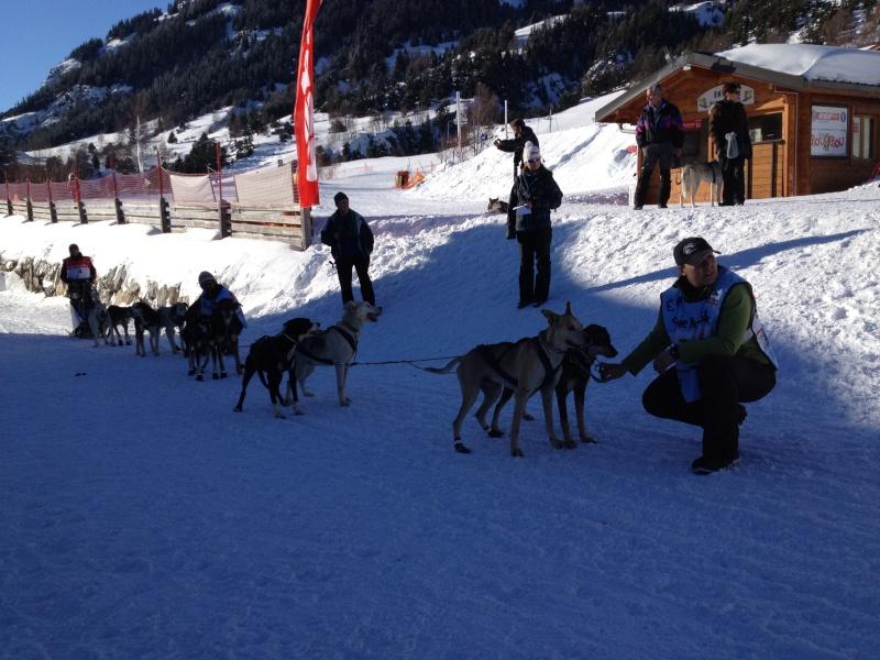 Candy, Chipie, Baltik en vacances de neige pour la grande odyssée 2013 Img_0813