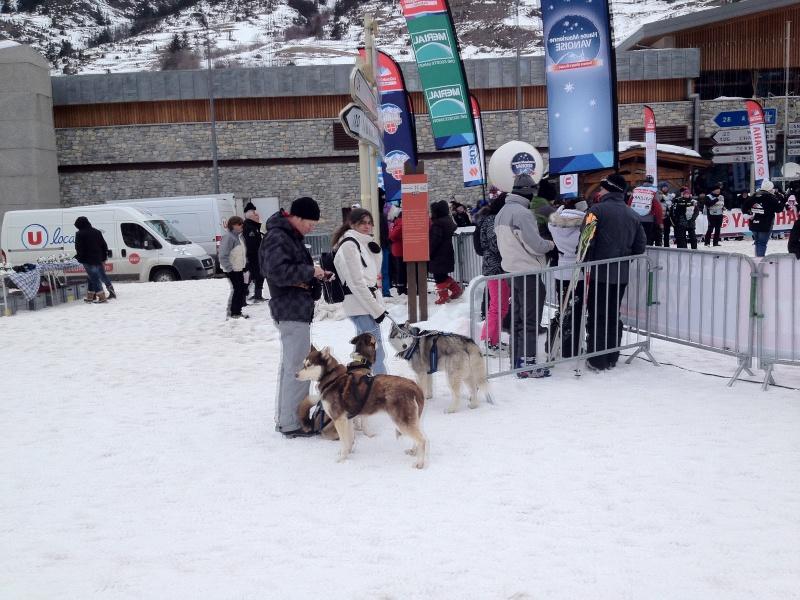 Candy, Chipie, Baltik en vacances de neige pour la grande odyssée 2013 Img_0910
