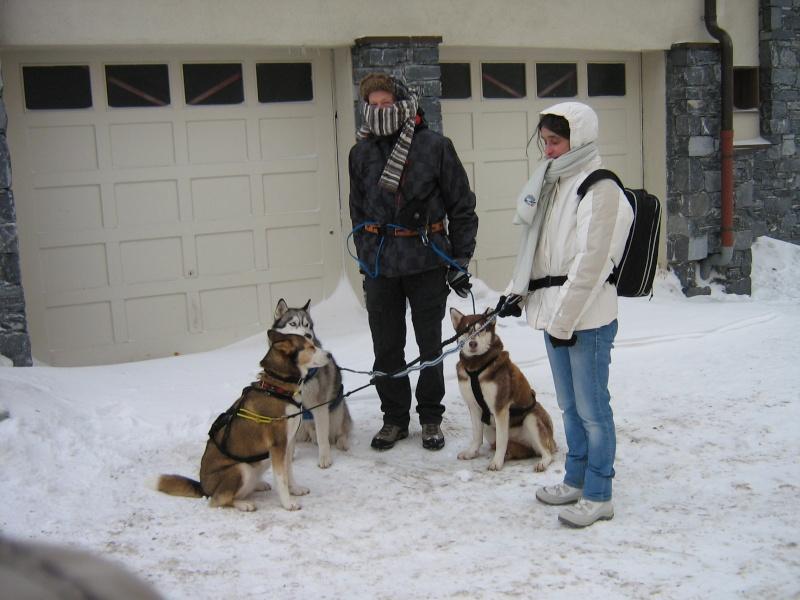 Candy, Chipie, Baltik en vacances de neige pour la grande odyssée 2013 Img_1210