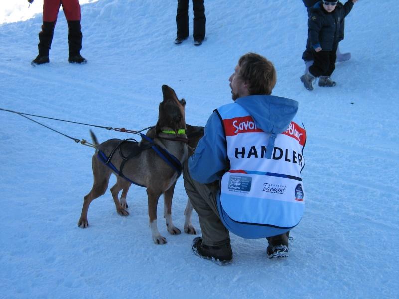 Candy, Chipie, Baltik en vacances de neige pour la grande odyssée 2013 Img_1221