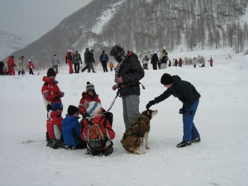 Candy, Chipie, Baltik en vacances de neige pour la grande odyssée 2013 Img_1223