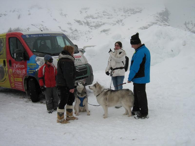 Candy, Chipie, Baltik en vacances de neige pour la grande odyssée 2013 Img_1224