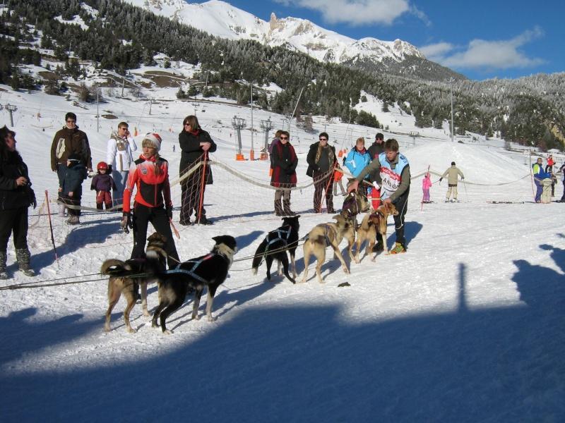 Candy, Chipie, Baltik en vacances de neige pour la grande odyssée 2013 Img_1310