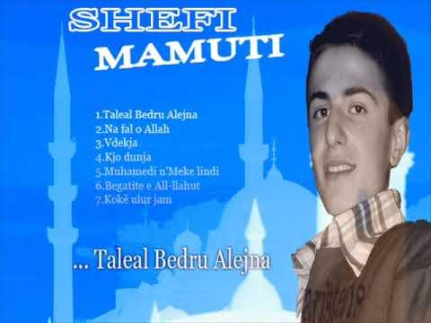 Shefi Mamuti Shefi_10