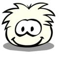 Puffle Adoptions White-11