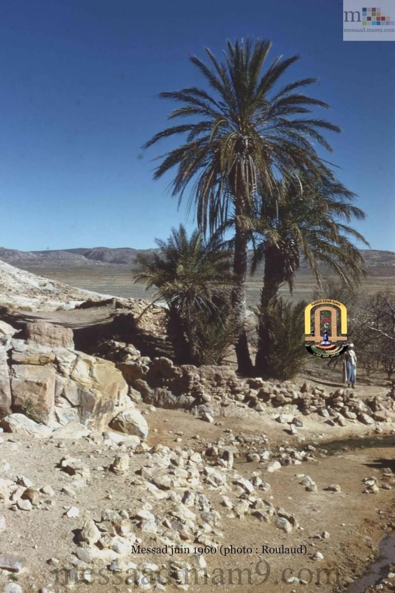 من اندر الصور التي سوف تشاهدونها لمدينة مسعد (الجزء الثاني ) مدينة مسعد 1959/1960 01_811