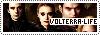 Volterra Life Copie_10