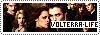 Volterra-Life Copie_11