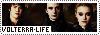 Volterra Life Copie_12